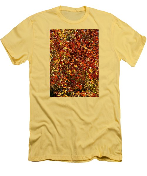 Men's T-Shirt (Slim Fit) featuring the photograph Autumn Colors by Karen Harrison