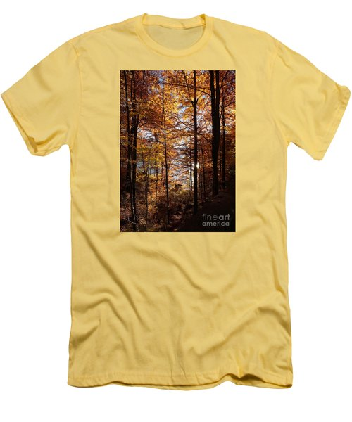 Autumn In The Alps 4 Men's T-Shirt (Slim Fit) by Rudi Prott