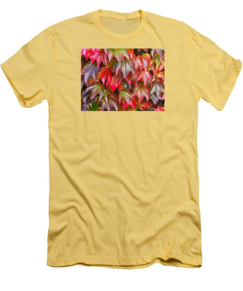 Autumn Leaves 01 Men's T-Shirt (Athletic Fit)