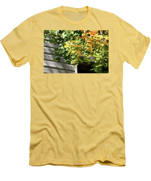 Autumn Leaves Against White Men's T-Shirt (Slim Fit) by Michele Wilson