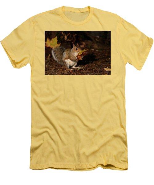 Autumn Squirrel Men's T-Shirt (Slim Fit) by Matt Malloy
