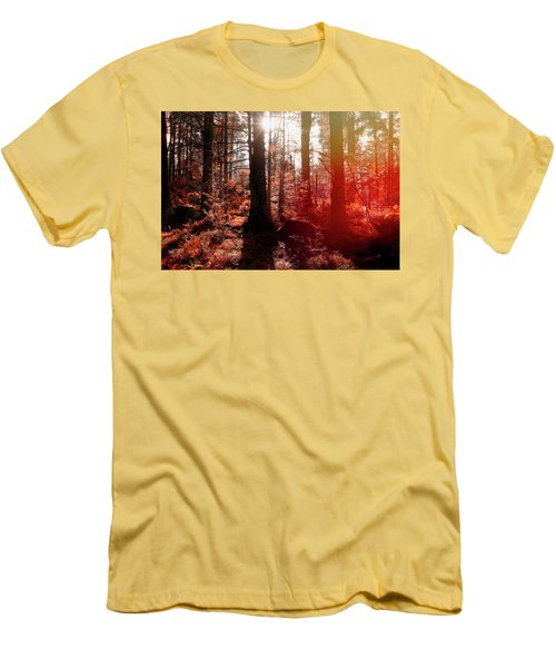 Autumnal Afternoon Men's T-Shirt (Slim Fit)