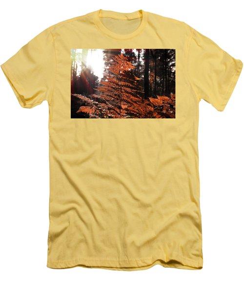 Autumnal Evening Men's T-Shirt (Athletic Fit)