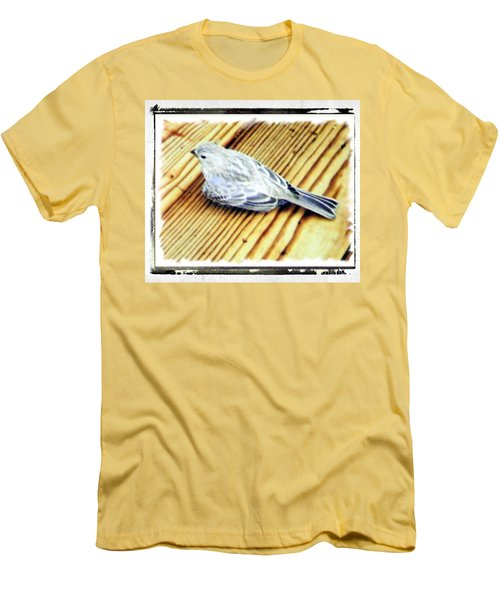 Baby Blue Jay Men's T-Shirt (Athletic Fit)