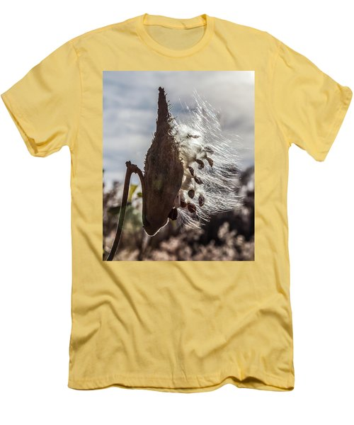 Back Lit Milkweed Pod Men's T-Shirt (Athletic Fit)