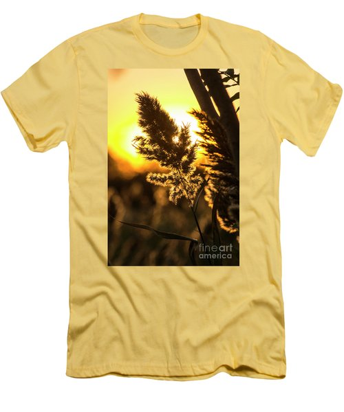Men's T-Shirt (Slim Fit) featuring the photograph Backlit By The Sunset by Zawhaus Photography