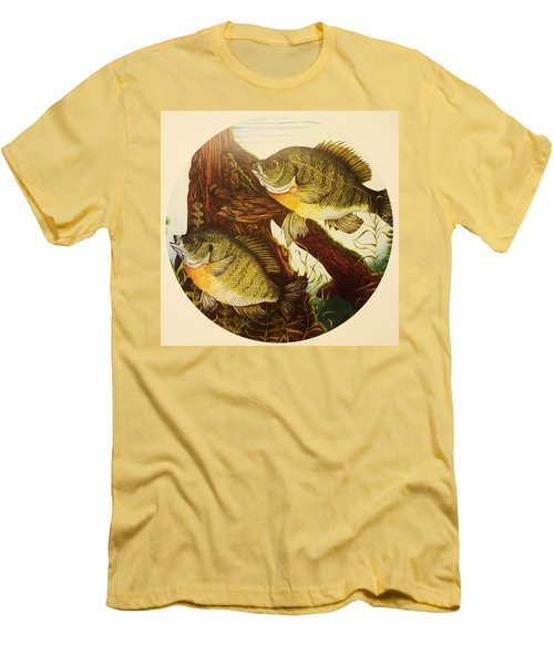 Basking Bluegills Men's T-Shirt (Athletic Fit)