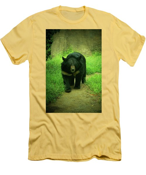 Bear On The Prowl Men's T-Shirt (Slim Fit) by Trish Tritz