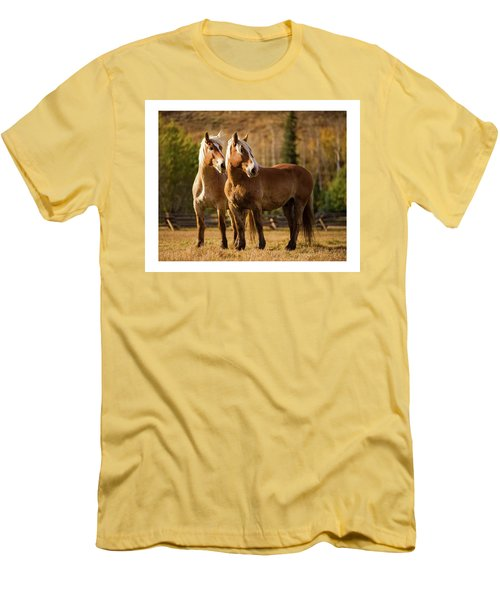 Belgian Draft Horses Men's T-Shirt (Athletic Fit)