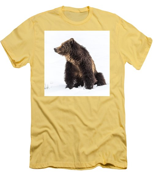 Men's T-Shirt (Slim Fit) featuring the photograph Beryl Springs Grizzly Sow In Snow by Yeates Photography
