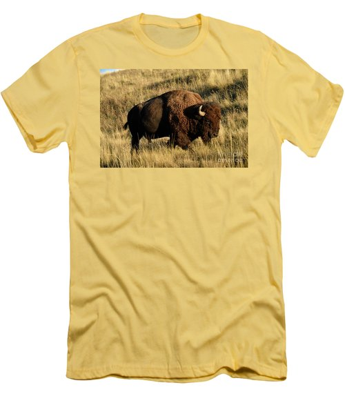 Bison  Men's T-Shirt (Slim Fit) by Cindy Murphy - NightVisions