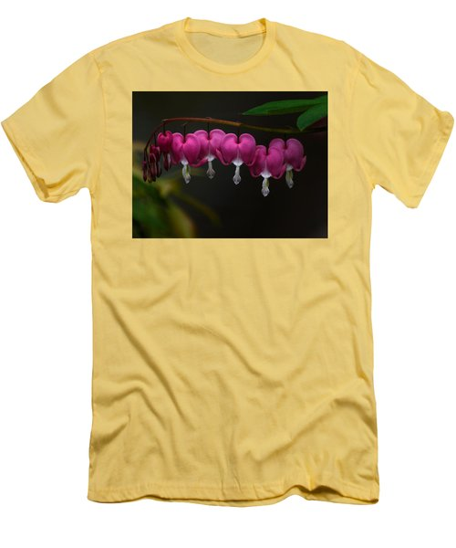 Bleeding Hearts Men's T-Shirt (Slim Fit) by Keith Boone