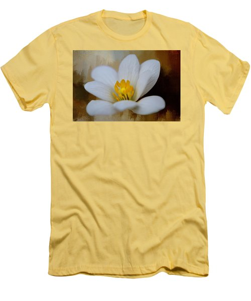 Bloodroot Men's T-Shirt (Slim Fit) by Diana Boyd