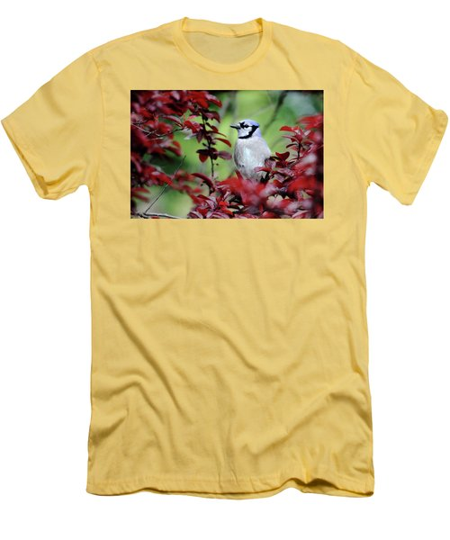 Blue Jay In The Plum Tree Men's T-Shirt (Slim Fit) by Trina Ansel
