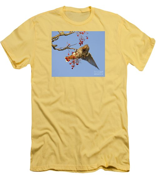 Bohemian Waxwing Men's T-Shirt (Slim Fit) by Liz Leyden