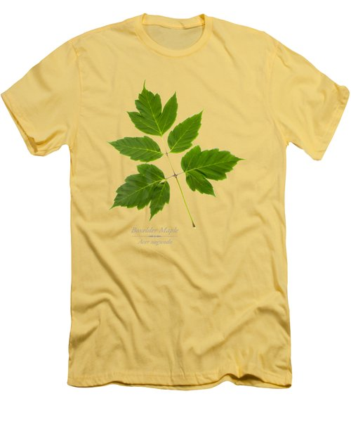 Men's T-Shirt (Slim Fit) featuring the mixed media Box Elder Maple by Christina Rollo