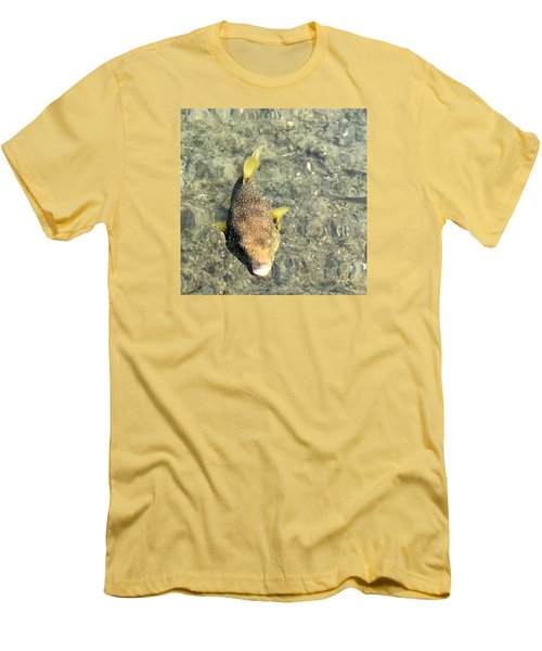 Men's T-Shirt (Slim Fit) featuring the photograph Box Fish - 1 by Karen Nicholson
