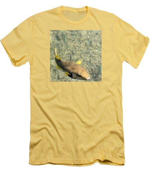 Men's T-Shirt (Slim Fit) featuring the photograph Box Fish - 3 by Karen Nicholson