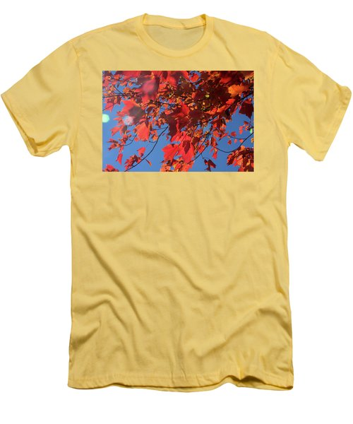 Branches Of Red Maple Leaves On Clear Sky Background Men's T-Shirt (Slim Fit) by Emanuel Tanjala