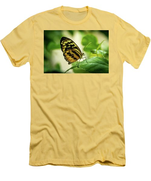 Brown And Black Tropical Butterfly Resting Men's T-Shirt (Athletic Fit)