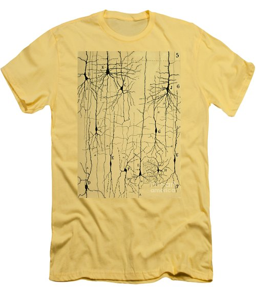 Cajal Drawing Of Microscopic Structure Of The Brain 1904 Men's T-Shirt (Athletic Fit)