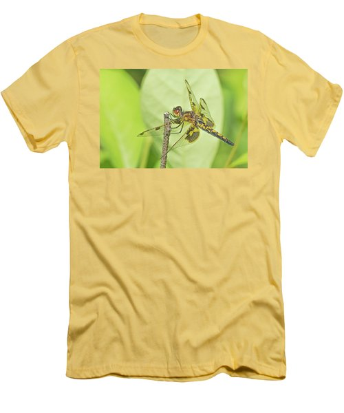Calico Pennant Men's T-Shirt (Athletic Fit)