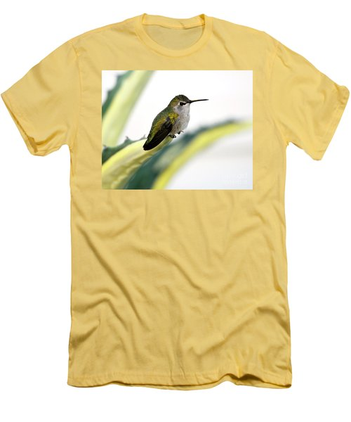 Calliope Hummingbird On Agave Men's T-Shirt (Athletic Fit)