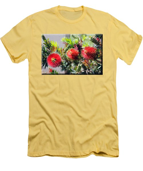 Callistemon - Bottle Brush T-shirt 6 Men's T-Shirt (Slim Fit) by Isam Awad