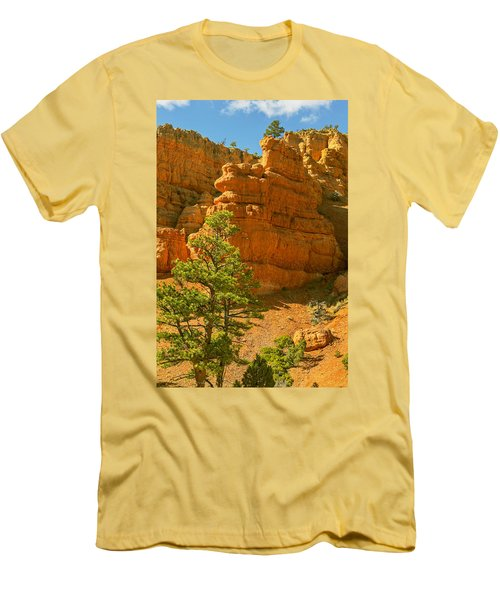 Casto Canyon Men's T-Shirt (Slim Fit) by Peter J Sucy