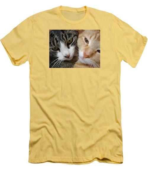 Cat Faces Men's T-Shirt (Slim Fit) by Jana Russon