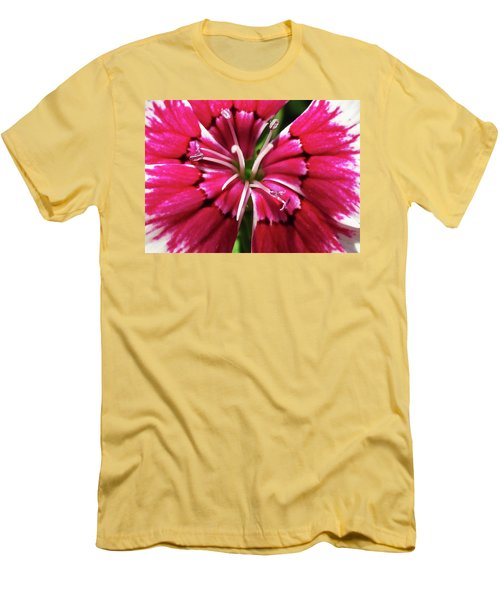 Center Of A Sweet William Men's T-Shirt (Slim Fit) by Mary Ellen Frazee