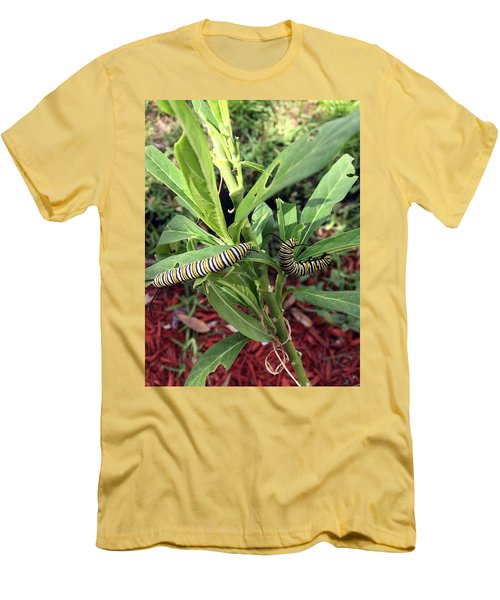 Change Is Coming Men's T-Shirt (Slim Fit) by Audrey Robillard