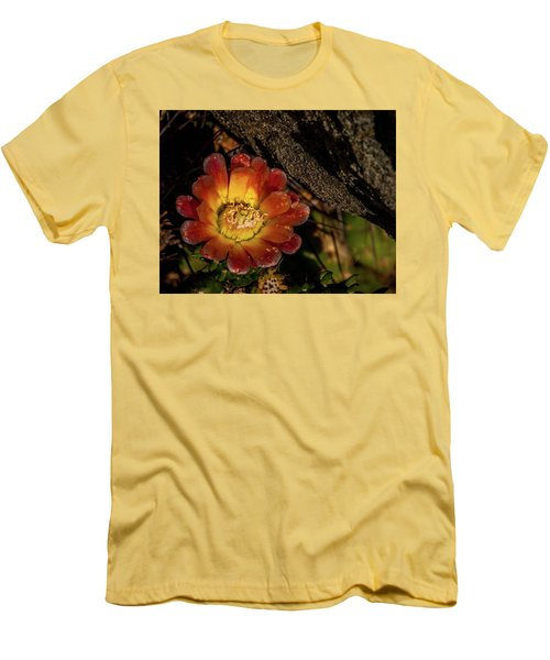 Cholla Men's T-Shirt (Slim Fit) by Martina Thompson