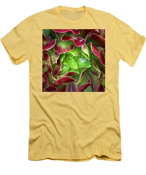 Christmas Succulent Men's T-Shirt (Slim Fit) by Russell Keating