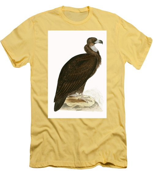 Cinereous Vulture Men's T-Shirt (Slim Fit) by English School