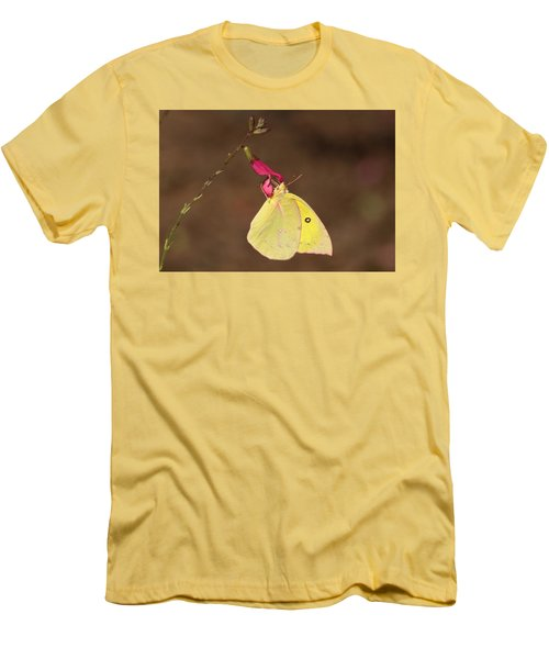 Clouded Sulphur Butterfly On Pink Wildflower Men's T-Shirt (Athletic Fit)