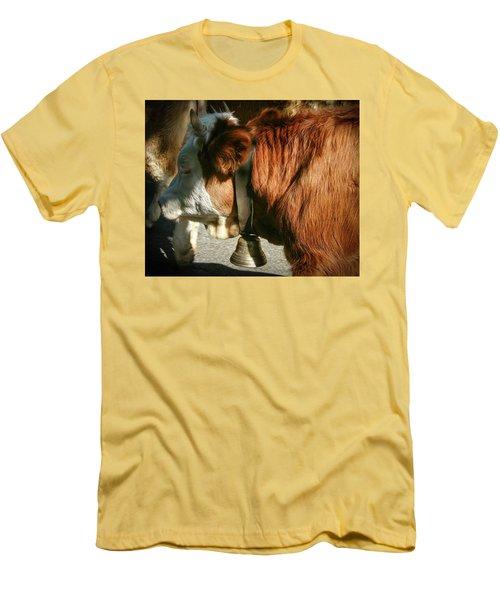 Cow Beautiful - Men's T-Shirt (Athletic Fit)