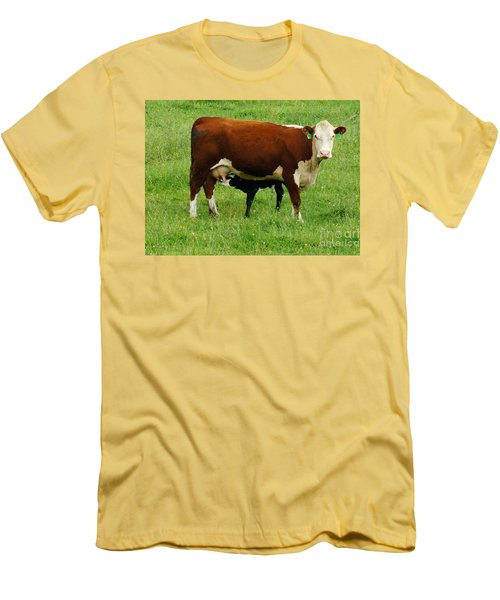 Men's T-Shirt (Athletic Fit) featuring the painting Cow With Calf by Debra Crank