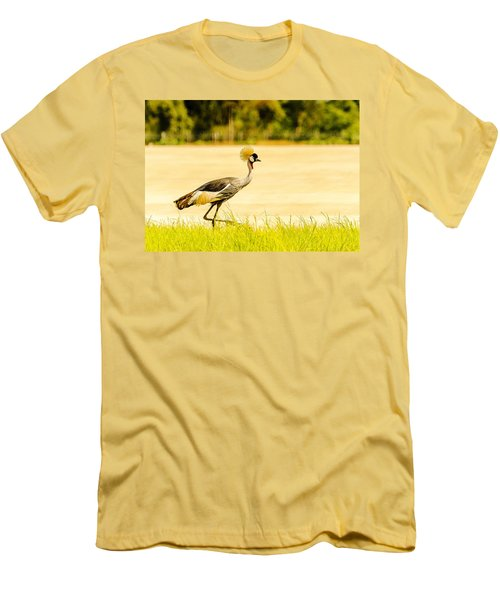 Crested Crane Men's T-Shirt (Athletic Fit)