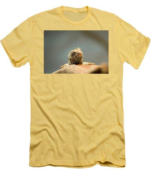 Curious Lizard Men's T-Shirt (Athletic Fit)