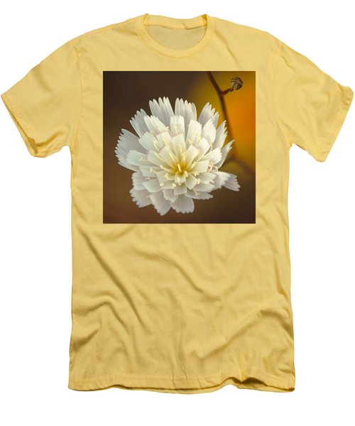 Death Valley Superbloom 203 Men's T-Shirt (Slim Fit) by Daniel Woodrum