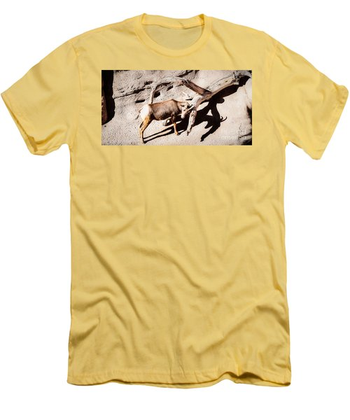 Desert Bighorn Ram Men's T-Shirt (Athletic Fit)