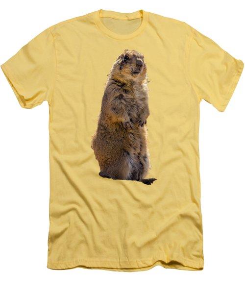 Desert Dawg Men's T-Shirt (Slim Fit) by Mark Myhaver