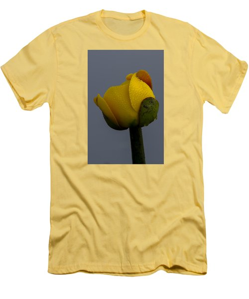 Dew Covered Yellow Water Lily Men's T-Shirt (Athletic Fit)