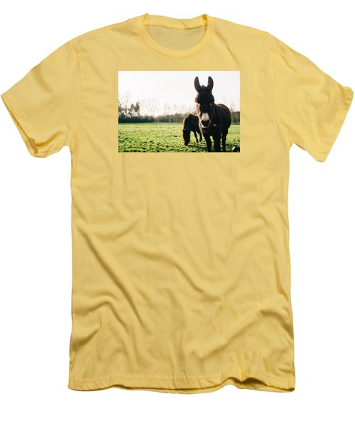 Donkey And Pony Men's T-Shirt (Slim Fit) by Pati Photography