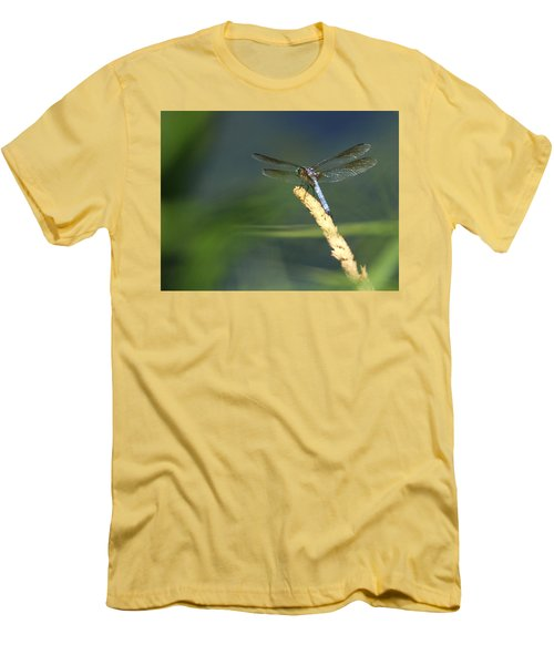 Dragonfly New York Men's T-Shirt (Slim Fit) by Bob Savage