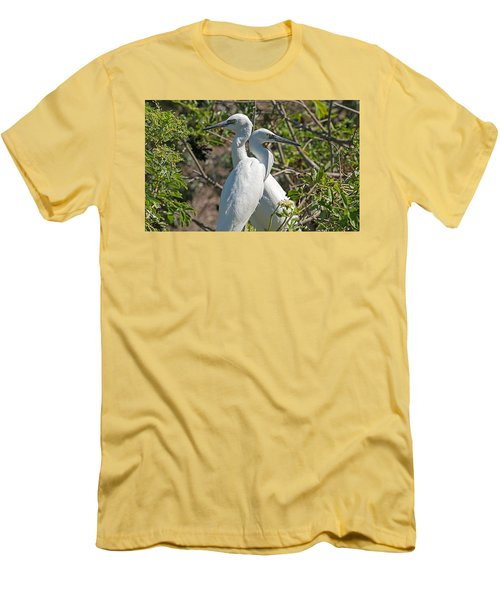 Dueling Egrets Men's T-Shirt (Slim Fit) by Kenneth Albin