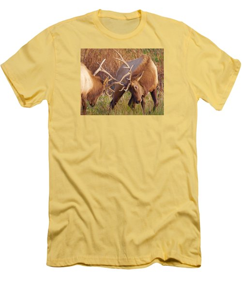 Elk Tussle Men's T-Shirt (Athletic Fit)
