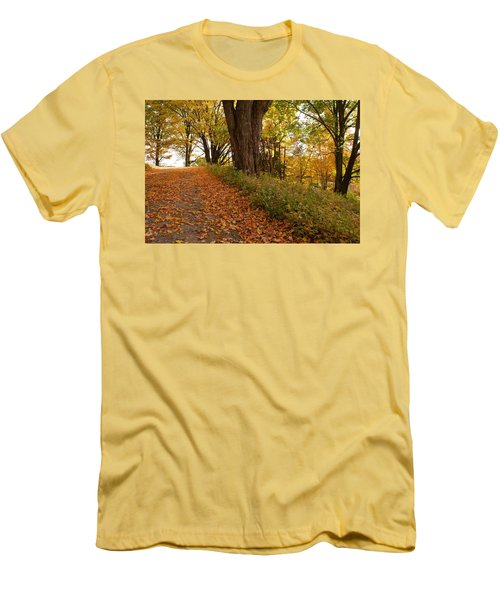 Fall Driveway Men's T-Shirt (Slim Fit) by Lois Lepisto
