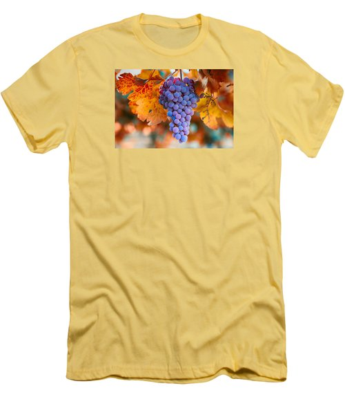 Fall Grapes From The Yakima Valley,  Men's T-Shirt (Slim Fit) by Lynn Hopwood